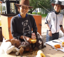 Seasonal staff helping goats prepare pumpkins for Hens